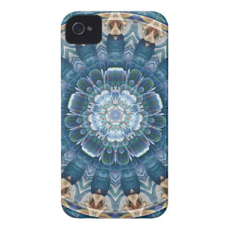 Mandalas for Times of Transition 2 Gifts iPhone 4 Case