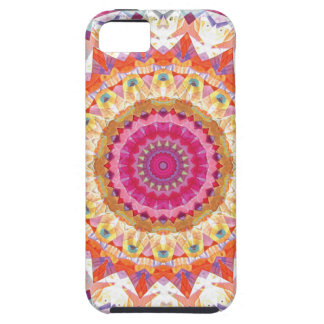 Mandalas of Forgiveness and Release 3 iPhone SE/5/5s Case