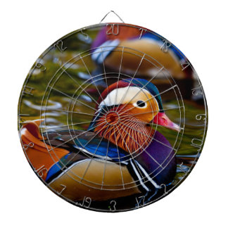 Mandarin colorful duck in the water dart board