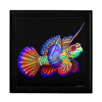 Mandarin Dragonet Goby Fish Gift Box