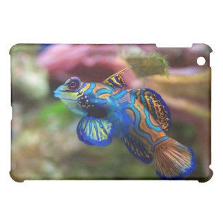 Mandarin dragonet  iPad mini cover