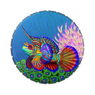 Mandarin Dragonet Reef Fish Candy Tin