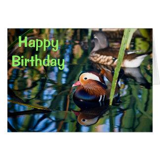 Mandarin Duck Happy Birthday Greeting Card
