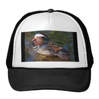 Mandarin Duck Trucker Hat