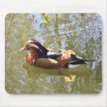 Mandarin Duck Mouse Pad