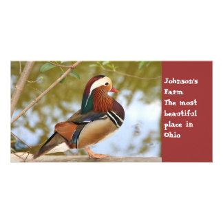 Mandarin Duck Personalized Photo Card