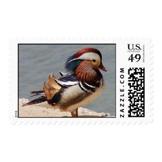 Mandarin Duck Postage