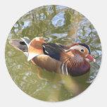 Mandarin Duck Sticker
