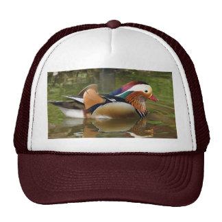 Mandarin Duck Truckers Hat