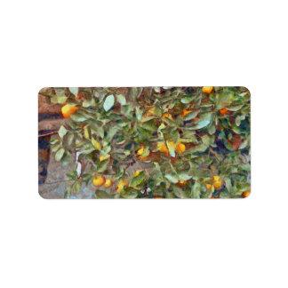 Mandarin Orange plant in the garden Address Label