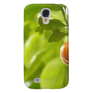 Mandarin Tree and Fruits Galaxy S4 Cases