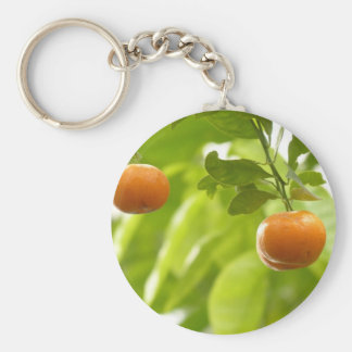 Mandarin Tree and Fruits Keychains