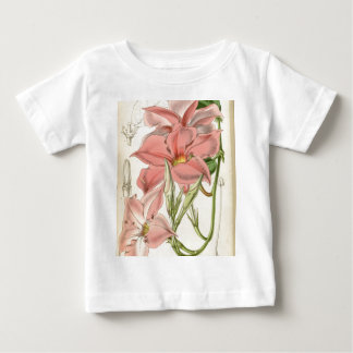 Mandevilla martiana baby T-Shirt