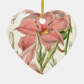 Mandevilla martiana ceramic ornament