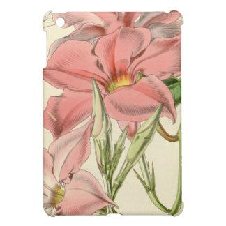 Mandevilla martiana iPad mini covers