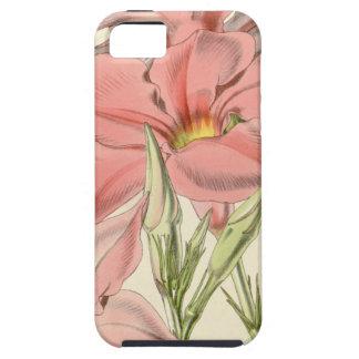 Mandevilla martiana iPhone SE/5/5s case