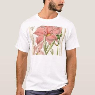 Mandevilla martiana T-Shirt