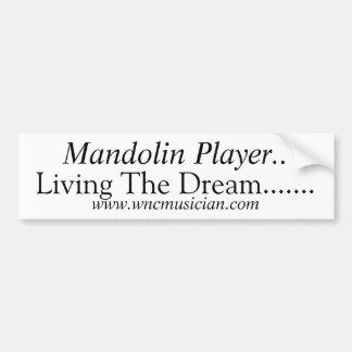 Mandolin Player Sticker