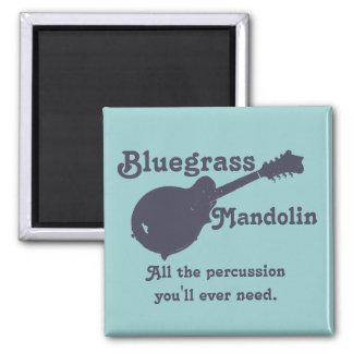 Mandolina del Bluegrass - toda la percusión que us Imán Cuadrado