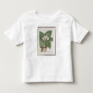 Mandragora del Atropa Tee Shirt