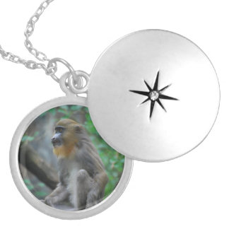 mandrill-23.jpg personalized necklace