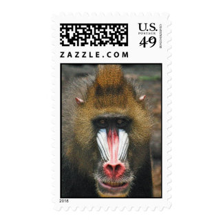 Mandrill Postage Stamps