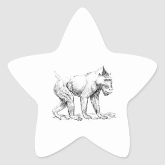 Mandrill Star Sticker