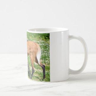Maned Wolf walking on grass Classic White Coffee Mug