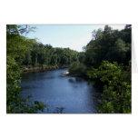 Manera abajo sobre el río Notecard de Suwannee Tarjeta De Felicitación