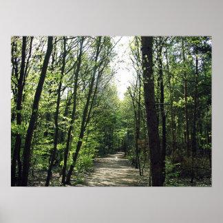 Manera del bosque poster