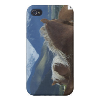 Manes & Mountains iPhone 4 Cover