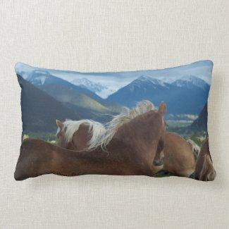 Belgian Draft Horse Toss Pillow