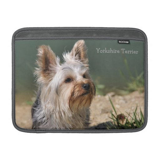Manga de aire de Yorkshire Terrier MacBook Fundas MacBook