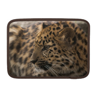 Manga de Cub MacBook del leopardo de Amur Fundas MacBook