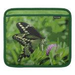 Manga del carrito de la mariposa mangas de iPad