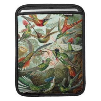 Manga del iPad del colibrí Fundas Para iPads