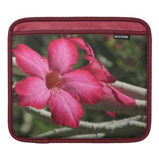 Manga del iPad del rosa de desierto Funda Para iPads