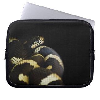 Manga del ordenador portátil de rey serpiente de C Fundas Portátiles