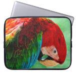 Manga del ordenador portátil del Macaw del loro de Mangas Computadora