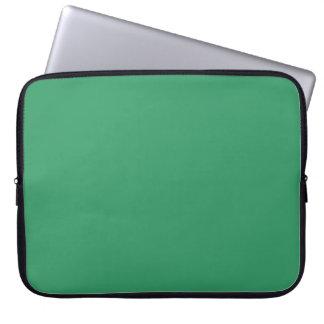 Manga verde sólida del ordenador portátil del fond manga portátil