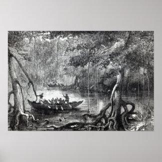Mangle Forest Póster