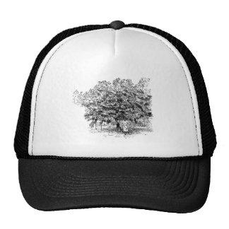 Mango Farmer Trucker Hats
