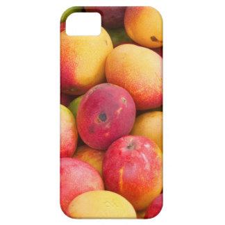 Mango iPhone SE/5/5s Case