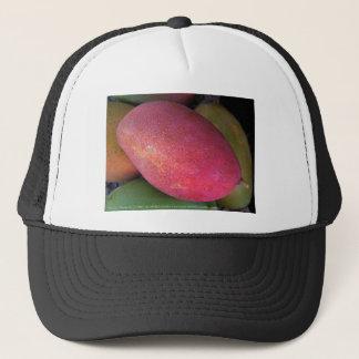 Mango Study #1 Hat