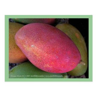 Mango Study #1 Postcard