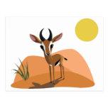 Mango the Gazelle Postcards