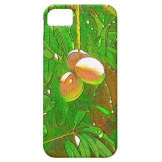 Mangoes iPhone SE/5/5s Case