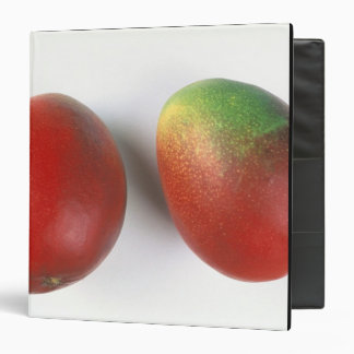 Mangos For use in USA only.) Vinyl Binders