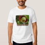 mangosteen shirts