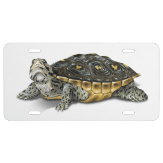 Mangrove Diamondback Terrapin License Plate